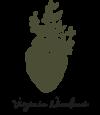 Virginia Niccolucci Logo
